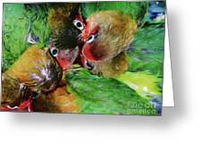 Baby Bird Nest In Hong Kong Bird Market Greeting Card