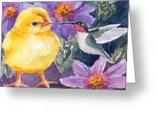 Baby Chick And Hummingbird Greeting Card