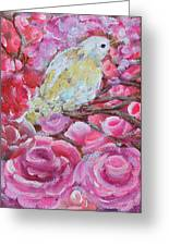 Baby Dove Of Peace Pink Flowers Greeting Card