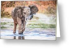 Baby Elephant Spraying Water Greeting Card