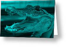 Baby Gator Turquoise Greeting Card