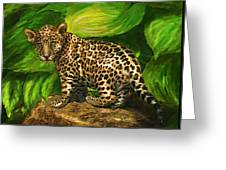 Baby Jaguar Greeting Card