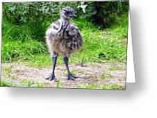 Baby Ostrich In The City Greeting Card