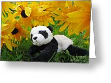 Baby Panda Under The Golden Sky Greeting Card