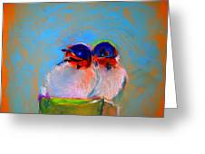 Baby Swallows Greeting Card by Sue Jacobi