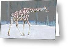 Baby Walk Greeting Card