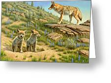 Babysitter  -  Coyotes Greeting Card by Paul Krapf