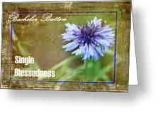 Bachelor Button Greeting Card
