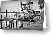Back At The Dock Greeting Card