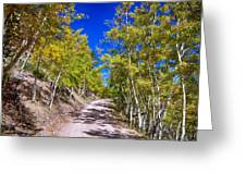 Back Country Road Take Me Home Colorado Greeting Card