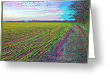 Back Forty - Use Red/cyan Filtered 3d Glasses Greeting Card