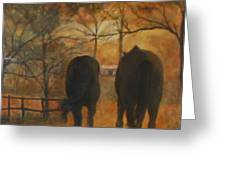 Back To The Stable Greeting Card