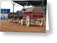 Back View Anheuser Busch Clydesdales Pulling A Beer Wagon Usa Greeting Card