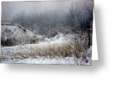 Back Woods Winter Greeting Card