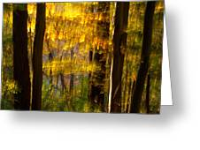 Backlit Leaves Abstract Greeting Card