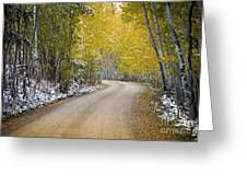 Backroads Of Autumn Greeting Card