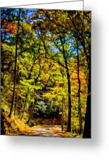 Backroads Of The Great Smoky Mountains National Park Greeting Card