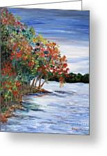 Back Waters Greeting Card