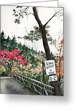 Backwoods Bridge Greeting Card