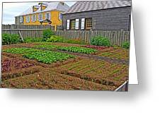 Backyard Garden In Louisbourg Living History Museum-1744-ns Greeting Card