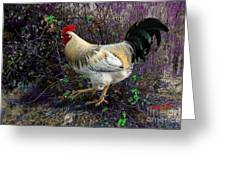 Backyard Rooster Greeting Card
