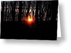 Backyard Sunset 2 Greeting Card