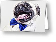Bacon The Pug Greeting Card