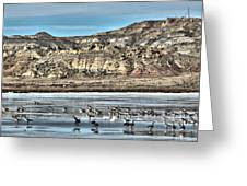 Badlands Spring Thaw Greeting Card