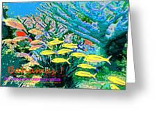 Bahamas Coral Reef Greeting Card
