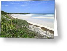 Bahia Honda Key Greeting Card