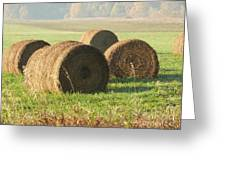 Bails Of Hay Greeting Card