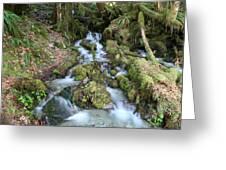 Baker Lake Steam And Waterfalls Greeting Card