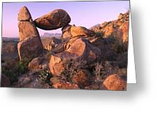 Balanced Rock In The Grapevine Greeting Card