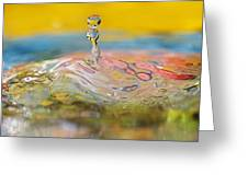 Balancing Act Greeting Card