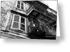 Balcony And Windows Mono Greeting Card