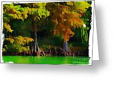Bald Cypress 3 - Digital Effect Greeting Card