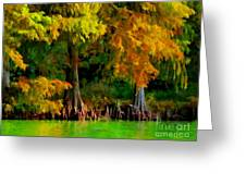 Bald Cypress 4 - Digital Effect Greeting Card