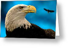 Bald Eagle And Fledgling  Greeting Card by Bob Orsillo