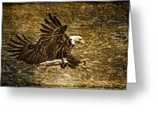 Bald Eagle Capture Greeting Card