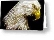 Bald Eagle Fractal Greeting Card