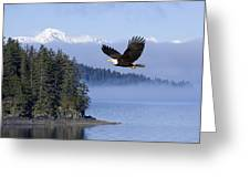 Bald Eagle In Flight Over The Inside Greeting Card