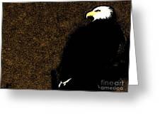 Bald Eagle In Repose Greeting Card