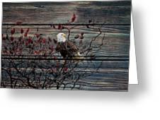 Bald Eagle On Barnwood Greeting Card