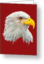Bald Eagle Painting Greeting Card