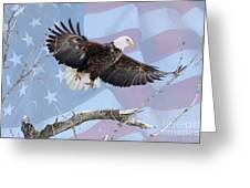 Bald Eagle Touch Of Pride Greeting Card