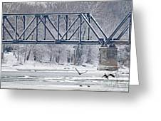 Bald Eagle With Fish By Railroad Bridge 6639 Greeting Card