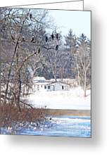 Bald Eagles In Tree In Grand Rapids Ohio 3996 Greeting Card