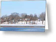 Bald Eagles In Tree In Grand Rapids Ohio Panorama Greeting Card