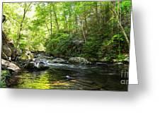 Bald River Greeting Card