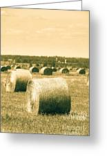 Baled And Ready Greeting Card